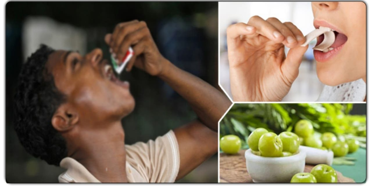 तंबाकू से नहीं छूट रही लत, तो आजमाएं ये पांच उपाय, बहुत जल्द मिल जाएंगा छुटकारा