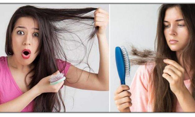 ये है एक पाकृतिक हेर कंडीशनर, जो आपके बालों को बनाएगा डेमेज फ्री, आज ही कर के ये उपाय