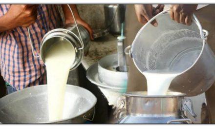 क्या आप जानते है की ये पांच चीजों को मिलाकर दूध को बनाया जाता है हानिकारक? इस तरह से आप भी कर सकते है चेक
