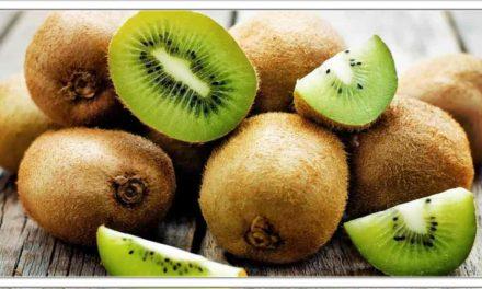 दुनिया का सबसे शक्तिशाली फल है कीवी, जड़ से खत्म हो जाएंगी खतरनाक बीमारिया,