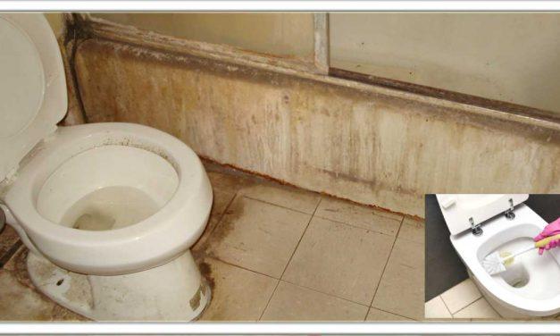 बिना एसिड या फिनाइल से बाथरुम में से दुर्गंध और गंदापन दूर करने के लिए अपनाए यह सरल,सस्ता उपाय, 5 मिनट मे नए जैसा हो जाएगा